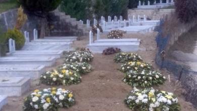 MEK Graves