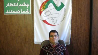Mohammad Jafar Najafi brother