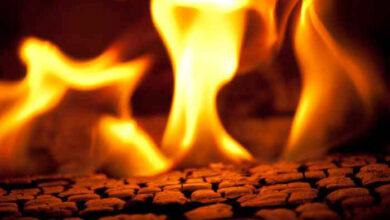 self immolation of MEK members