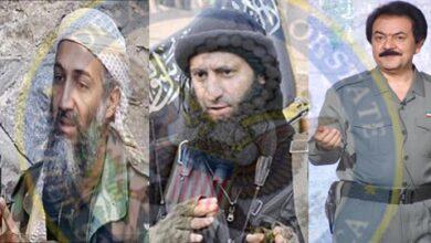 USA terrorist allies - Rajavi - Al Qaida