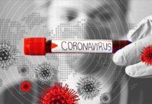 Photo of آیا ویروس کرونای ایران با نمونه مشابهش در اروپا و آمریکا فرق دارد؟