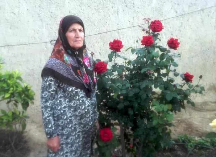 احترام فدائی جهرمی خواهر محمود فدائی جهرمی