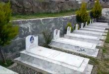 Photo of عاقبت اسیران سالمند در آلبانی کیش و مات است