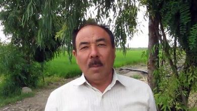 عبدالحمید رئوفیان