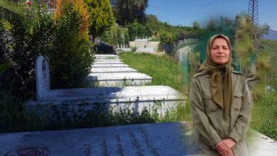 Saeede Shahrokhi